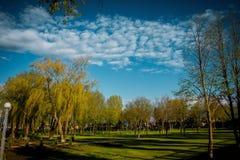 chmurnieje niezwykłego Natura, park błękitne niebo Obrazy Stock