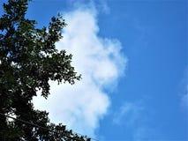 Chmurnieje w niebo Fotografia Royalty Free
