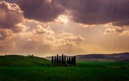 Chmurny dzień Z Cyprysowymi drzewami Od Val d ` Orcia fotografia stock
