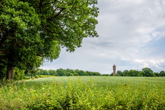Chmurny Holenderski lato krajobraz w Czerwu blisko Delden Twente, Overijssel Fotografia Royalty Free