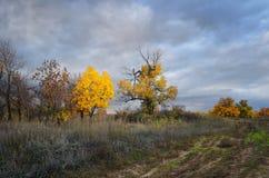 chmurny jesień krajobraz Zdjęcie Royalty Free