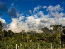 Chmurny krajobraz Andyjskie góry obraz royalty free