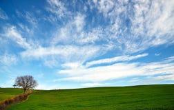 Chmurny niebo W wsi Zdjęcie Royalty Free