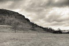 Chmurny popołudnie w Czeskich środkowych górach kształtuje teren teren blisko Mily wzgórza w zimie bez śniegu w Grudniu 2017 w se Zdjęcia Royalty Free