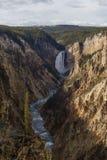 Chmurny popołudnie przy Uroczystym jarem Yellowstone Obrazy Stock