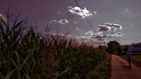 Chmurny Summer& x27; s dzień zdjęcie stock