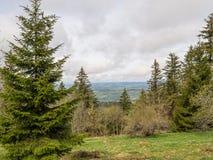 Chmurny widok vogezen past drzewa Zdjęcia Stock
