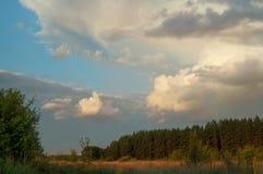 Chmurny wieczór lata niebo nad lasową doliną zarezewowani miejsca Rosja Krajobraz przy zmierzchem, polem i trawą, Obrazy Royalty Free