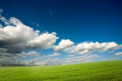 chmurnych upraw zielony niebo Obrazy Royalty Free