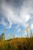 chmury 2 pola zdjęcie stock