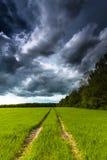 Chmury burza nad polem Zdjęcie Stock