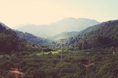 chmury caucasus kształtują obszar gór górskich shurovky ushba nieba Zdjęcia Stock