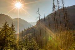 chmury caucasus kształtują obszar gór górskich shurovky ushba nieba gór Poland tatra Fotografia Royalty Free