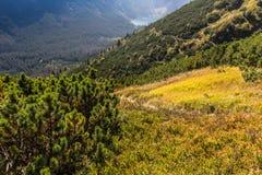 chmury caucasus kształtują obszar gór górskich shurovky ushba nieba gór Poland tatra Zdjęcie Stock