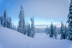 Chmury dryfuje wewnątrz nad narciarskimi skłonami przy wioską słońce Osiągają szczyt fotografia royalty free