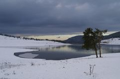 Chmury i jeden osamotniony drzewo na jeziorze Zdjęcie Royalty Free