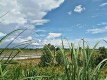 Chmury I krajobrazy zdjęcie royalty free