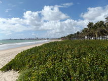 Chmury i nadmorski widok od piaskowatej plaży joao pessoa Fotografia Royalty Free