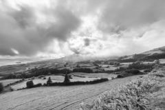 Chmury i paśniki w Czarny I Biały obraz royalty free
