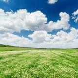 Chmury i zielona łąka z chamomiles zdjęcia royalty free