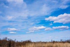 Chmury na niebieskim niebie Zdjęcia Stock
