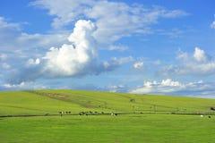 Chmury na obszar trawiastego Obraz Stock