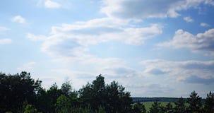 chmury nad lasem i polem zdjęcie wideo