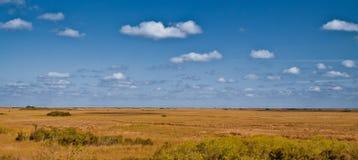 Chmury nad polem, Błota, Floryda Obraz Royalty Free