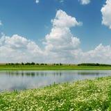 Chmury nad rzeką i łąką z chamomiles zdjęcia stock