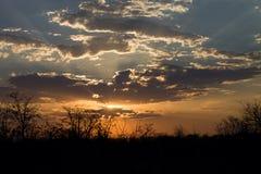 Chmury nad ubijanie przy zmierzchem, Botswana Obraz Royalty Free