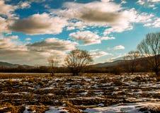 Chmury niebieskie niebo zdjęcia royalty free