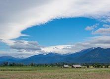 Chmury, niebo, pole i drzewo, zdjęcia royalty free