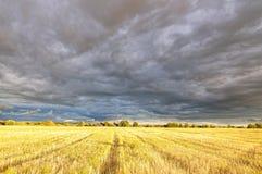 chmury odpowiadają zdjęcia royalty free