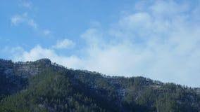 Chmury rusza się nad sosna ranku górskim lasowym Mgłowym krajobrazem przy górami zdjęcie wideo