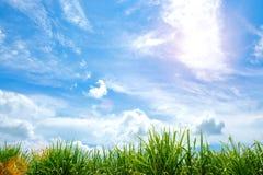 Chmury w niebieskiego nieba tle Obraz Royalty Free