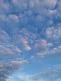 Chmury w wieczór niebie Obrazy Stock