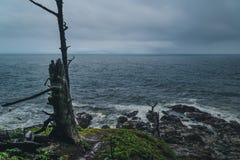 Chmurzący dzień przy wybrzeżem Zdjęcia Royalty Free