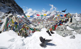 Cho La通行证在萨加玛塔国家公园,尼泊尔,喜马拉雅山 图库摄影