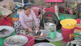 Cho Lon  market in Ho Chi Minh city. Cho Lon  is a Chinese-influenced section of Ho Chi Minh City (former Saigon). It lies on the west bank of the Saigon River stock video