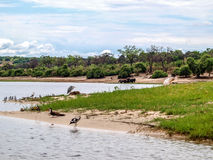 Chobe landscape Stock Photos