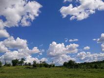 Chobe  landscape. This  is  a  typical   chobe   landscape  with   blue  skies    and  green  pastures Stock Image