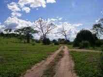 Chobe-Landschaft lizenzfreie stockbilder