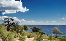 Chobe river in Botswana Royalty Free Stock Photos