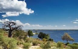 Chobe river in Botswana royalty free stock photos