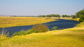 Chobe River landscape, view from Caprivi Strip on Namibia Botswana border, Africa. Chobe National Park, famous wildlilfe reserve a Stock Images