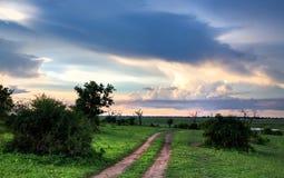 Chobenatuurreservaat in Botswana stock afbeelding