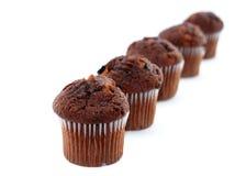 Free Choc-chip Cakes Stock Image - 1571401