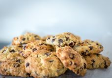 Choc chip cookies. Freshly baked choc chip cookies royalty free stock photography
