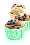 Choc Chip Muffin Stock Photography