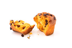 Choc chip muffin Royalty Free Stock Photo